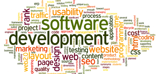 What To Ask To Find The Right Developer For You?